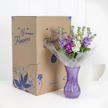 Plants - British Scented Stocks in Vase - Image 4