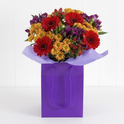 Plants - Autumn Gift Bag  - Image 2