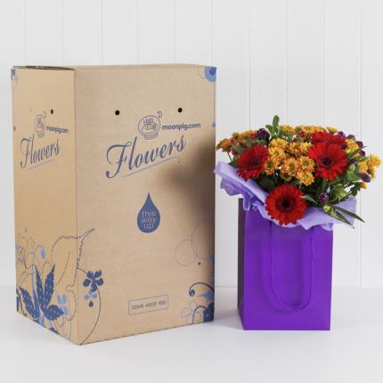 Plants - Autumn Gift Bag  - Image 4