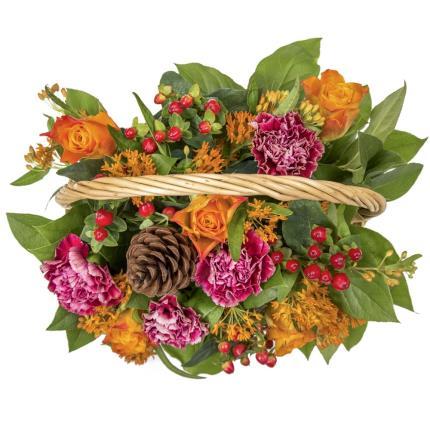 Plants - Harvest Basket  - Image 4