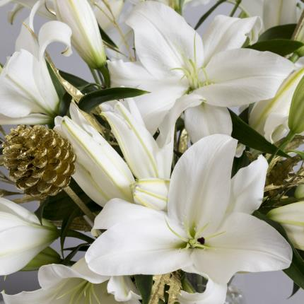Plants - The Luxury Christmas Lilies - Image 3