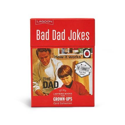 Gadgets & Novelties - Ladybird Bad Dad Jokes - Image 1