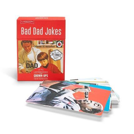 Gadgets & Novelties - Ladybird Bad Dad Jokes - Image 2
