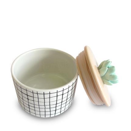 Gadgets & Novelties - Urban Garden Succulent Jar - Image 3