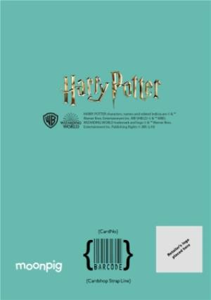 Greeting Cards - Harry Potter cartoon card - Happy birthday Son photo upload card - Image 4
