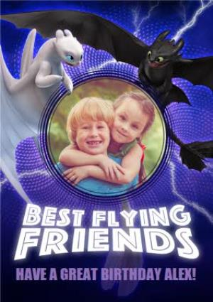 Greeting Cards - Best Flying Friends - How To Train Your Dragon Birthday Card  - Image 1