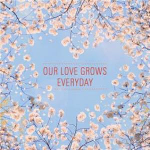 Greeting Cards - Joy Our Love Grows Everyday Card - Image 1