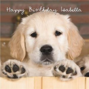 Golden Retriever Dog Birthday Card