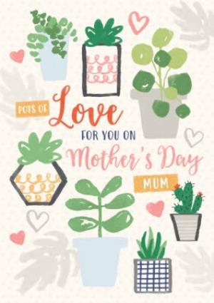 Greeting Cards - Illustrated Succulents Personalised Mother's Day Card - Image 1