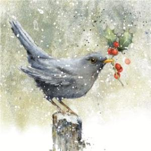 Greeting Cards - Blackbird With Holly Square Christmas Card - Image 1