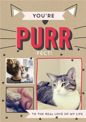 Greeting Cards - You're Purr-Fect Cat Valentine's Day Photo Card - Image 1