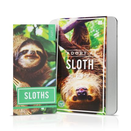 Gadgets & Novelties - Adopt An Animal Sloth Gift Set - Image 2
