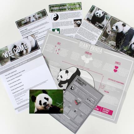 Gadgets & Novelties - Adopt An Animal Panda Gift Set - Image 2