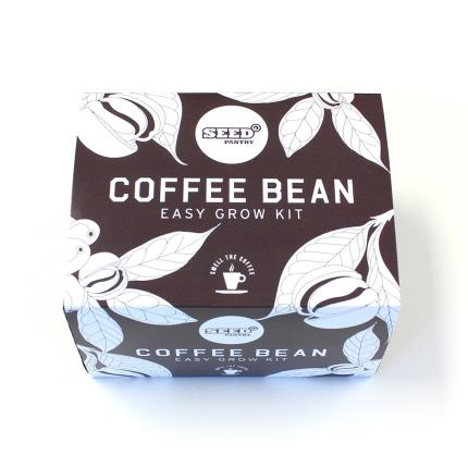 Gadgets & Novelties - Easy Grow Coffee Bean Kit - Image 1