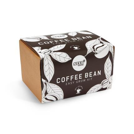Gadgets & Novelties - Easy Grow Coffee Bean Kit - Image 3
