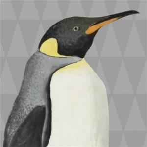 Greeting Cards - Illustrated Penguin Card - Image 1