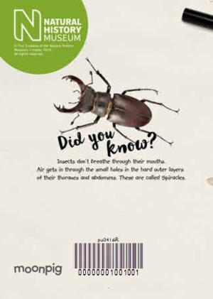 Greeting Cards - Insect Expert Photo Upload Card - Image 4