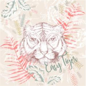 Greeting Cards - Birthday Card - just a note - easy tiger - art card - Image 1