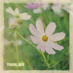 Greeting Cards - Little Flower Personalised Thank You Card - Image 1