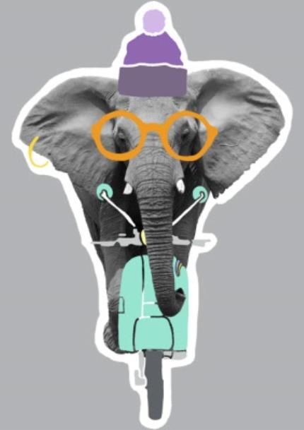 T-Shirts - Elephant-Tastic! Personalised T-shirt - Image 4