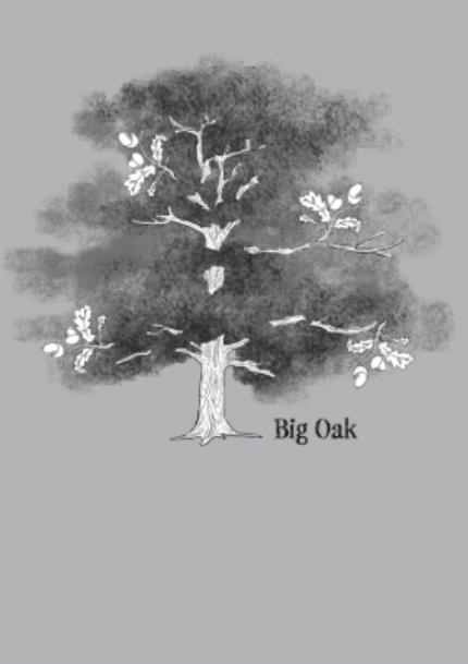 T-Shirts - Big Oak Combo Personalised T-shirt - Image 4