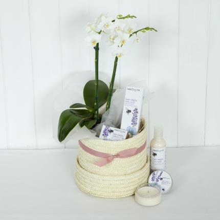 Plants - Bathtime Bliss - Image 2