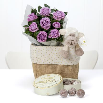 Plants - New Baby Hamper - Image 2