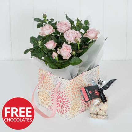 Plants - Spring Rose Gift Bag - Image 2