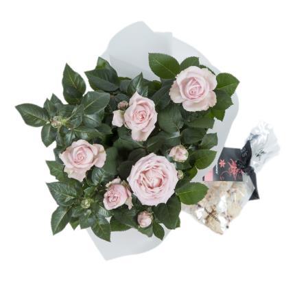 Plants - Spring Rose Gift Bag - Image 3