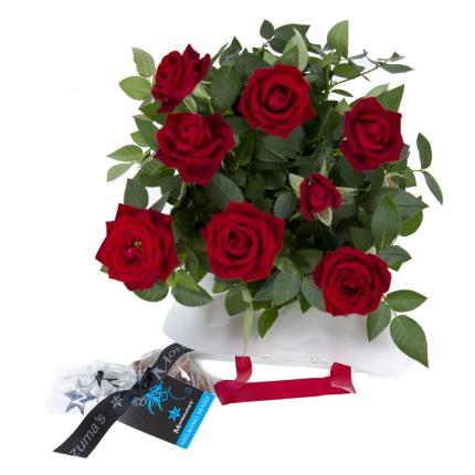 Plants - Christmas Rose Gift Bag - Image 3