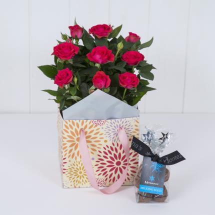 Plants - Rose Gift Bag - Image 2