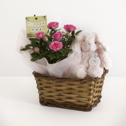 Plants - The Baby Girl Gift Basket - Image 2