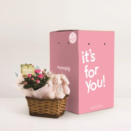 Plants - The Baby Girl Gift Basket - Image 4