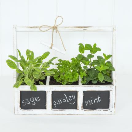 Plants - Herb Chalkboard Planter - Image 2