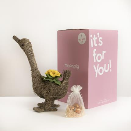 Plants - The Easter Goose with Thornton's Chocolate Eggs - Image 4