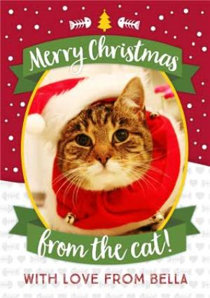 Greeting Cards - Merry Christmas From The Cat Photo Upload Card - Image 1