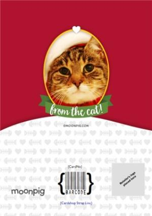 Greeting Cards - Merry Christmas From The Cat Photo Upload Card - Image 4