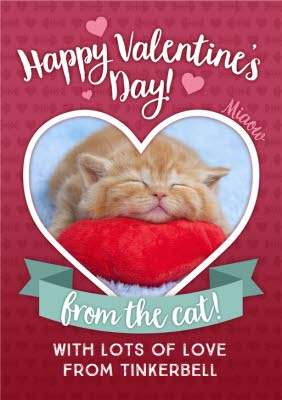 Greeting Cards - Happy Valentines Day From The Cat Photo Upload Card - Image 1