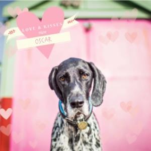 Greeting Cards - Big Pink Hearts Personalised Card - Image 1