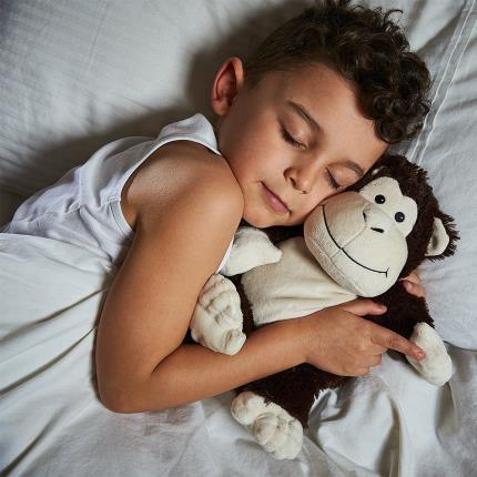 Soft Toys - Warmies Microwavable Cozy Monkey - Image 2