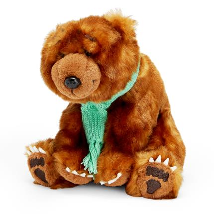 Soft Toys - We're Going On A Bear Hunt Book & Soft Plush Bear Gift Set - Image 2