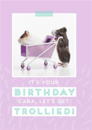 Greeting Cards - Let's Get Trollied - Guinea Pig - Birthday Card  - Image 1