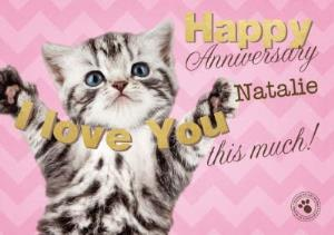 Greeting Cards - Kitty Loves You Personalised Happy Anniversary Card For Wife - Image 1