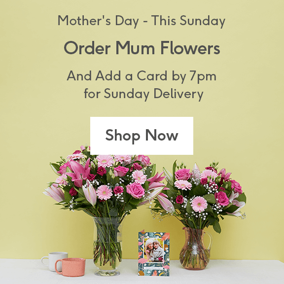 Send Mum Flowers And Add A Card