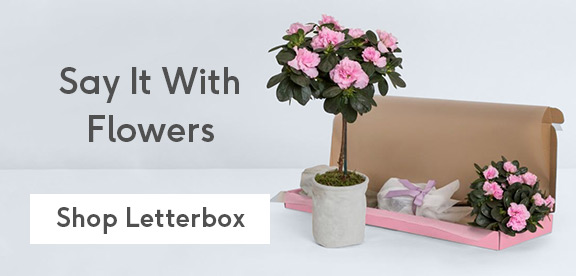 Personalised Birthday Cards Christmas Letterbox Flowers