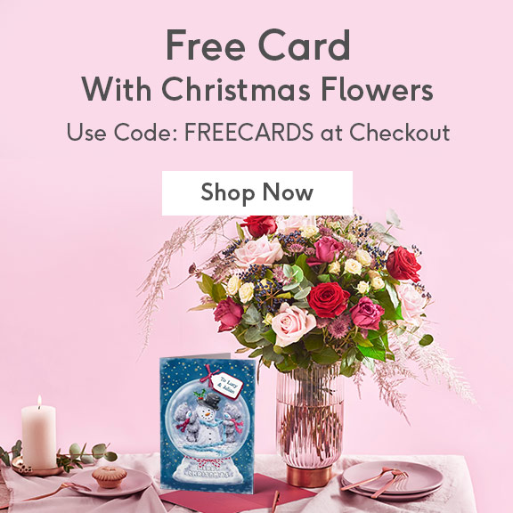 Christmas Flowers With Offer